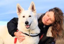 Heidi är Årets bragdhund 2013