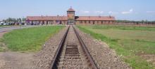 Riksdagsledamöter reser till Auschwitz