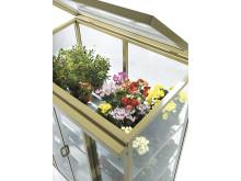 Vädringslucka för ditt väggväxthus