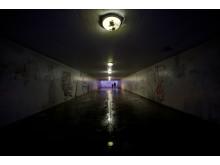 En webbkampanj har utsett Dalaplans gångtunnel i Malmö till Sveriges läskigaste plats.