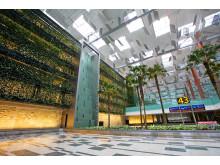 Terminal 3 green wall