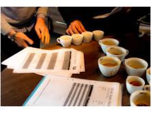 Kaffekvalitet avgörs med hjälp av protokoll och perfektion