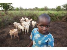 Flicka i Kenya