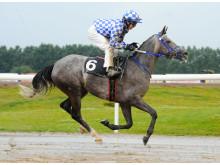 Gharra'a vinner Skandinaviskt Arabderby 2011
