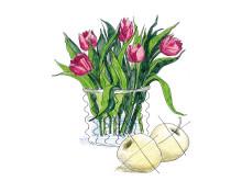 Undvik att placera tulpaner nära färsk frukt