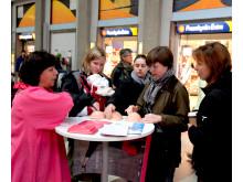 Bröstcancerfonden och BRO - om bröstcancer, Breast Health Day 2011