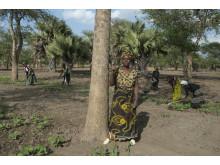 Kvinnliga småjordbrukare har nyckeln för att avskaffa hungern i världen.
