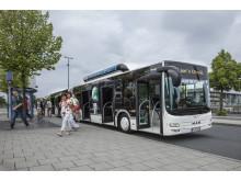 "MAN Lion's City GL CNG valgt til ""Bus of the Year 2015"""