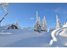 Snövallar i Sälen