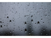 Regndråper på vindu