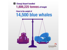 Total air freight handled in 2012