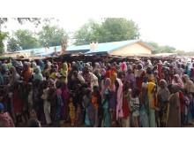 Runt 12 000 människor sköker skydd i ett läger nära staden Bama i Borno State, Nigeria.