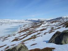 Vår i Tysfjord