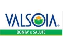Valsoia logo