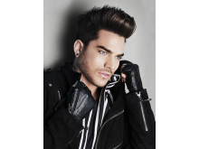 Pressbild Adam Lambert