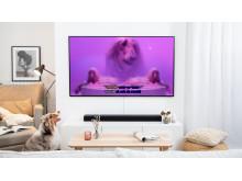 Dog Karaoke TV2