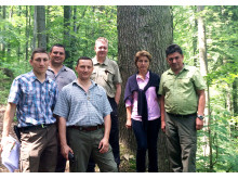 The site of Forest Romania 2015 is typical of Romania, with steep terrain and large stems.