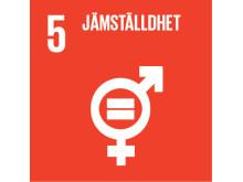 FN:s Globala utvecklingsmål