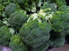 Anders Rosengren forskar om broccoli och dess positiva fördelar