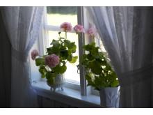 Romantiskt i torpfönstret