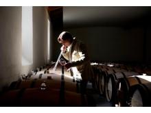 Peter Sisseck i vinkällaren