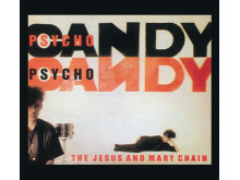 The Jesus and Mary Chain til NorthSide 2015