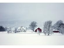 Idylliske Kimerud gård på Tranby i Lier