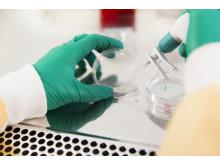 Biomedicinska analytikerprogrammet
