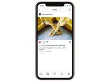 Democratic_Gallery_iPhone_Instagram