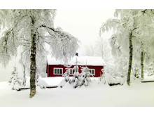 Lelanghytta i Finnemarka, Buskerud Foto: Tom Helgesen