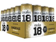 Celsius_gingerale_flak_PNG
