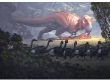 Fossil och evolution -  T-rex