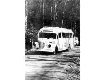 Vita bussarna 3