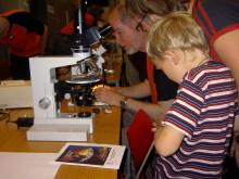 Geologins dag - kika i mikroskop
