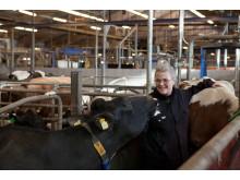 Mångmiljondonation till SLU för forskning på mjölkkor