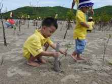 Planting trees as part of Panasonic Mangrove Reforestation 2016