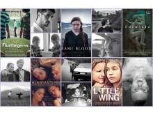 Filmer nominerade till Nordiska rådets filmpris 2017