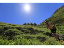 Genis Zapater springer ASICS Outrun the Sun utmaning