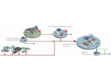 Illustration af rensning af Hospital Spildevand