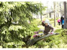 Flicka utövar Naturparkour i skogen