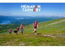 Hemavan Tärnaby - Fjällvandring på Ryfjället