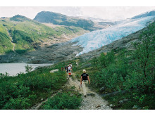 Der Svartisen-Gletscher ist eines der zahlreichen Naturphänomene nahe Bodø