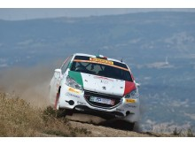 Pirelli_Rally2