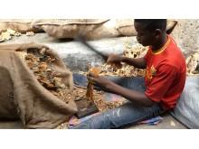Norsk tørrfisk på marked i Lagos