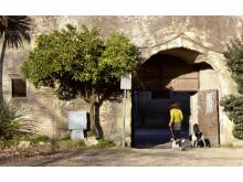 1. Rom – spännande lukter och hundvänlig pizzeria