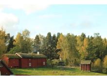 Höst på Vallby friluftsmuseum