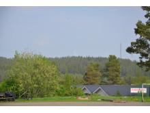 Utsikt över vindkraftparken på Tavelberget