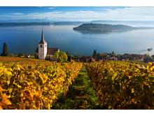Blick auf Ligerz mit Ausflugsschiff auf dem Bielersee. Copyright: Switzerland Tourism By-Line: swiss-image.ch/Andreas Gerth