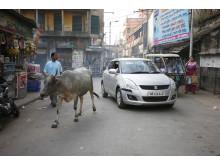 Moderne gadeliv i det gamle Serampore