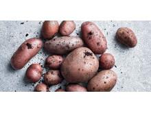 Potatisbild
